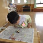こあら組 田中 カブトムシの幼虫大きくなりました!